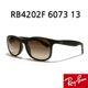Ray Ban - RAYBAN 레이벤 선글라스 RB4202F 6073 13 브라운
